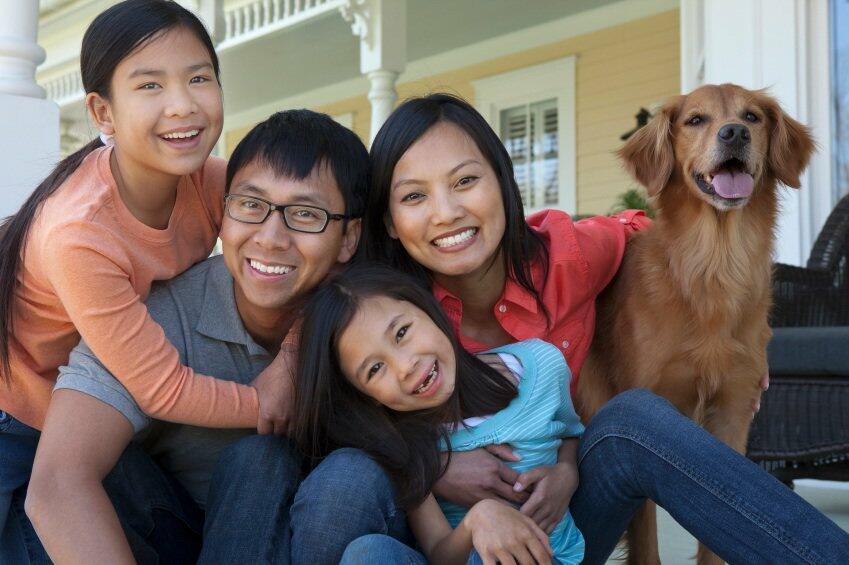familydog